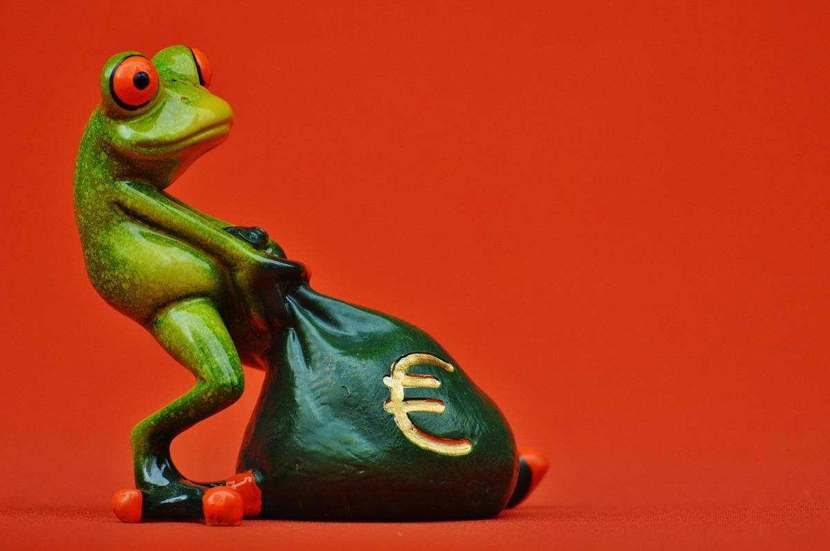 frog-1250486_1280